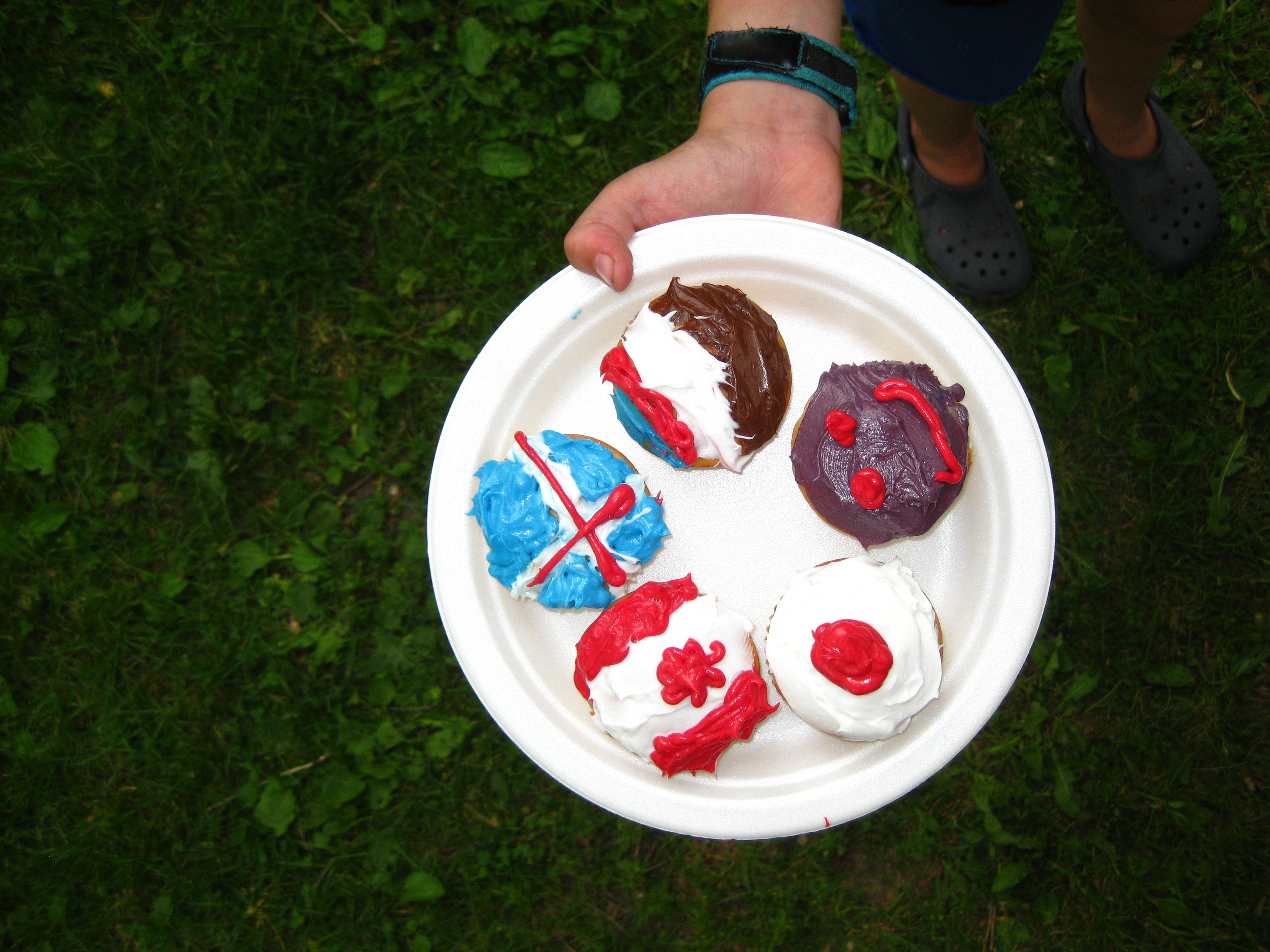 Icelandic National Day Picnic At Dufferin Grove Park